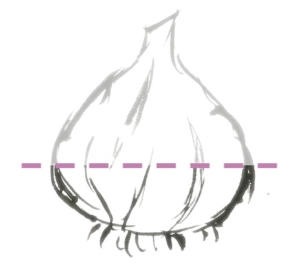 Como debemos cortarla cebolla blanca del calçot
